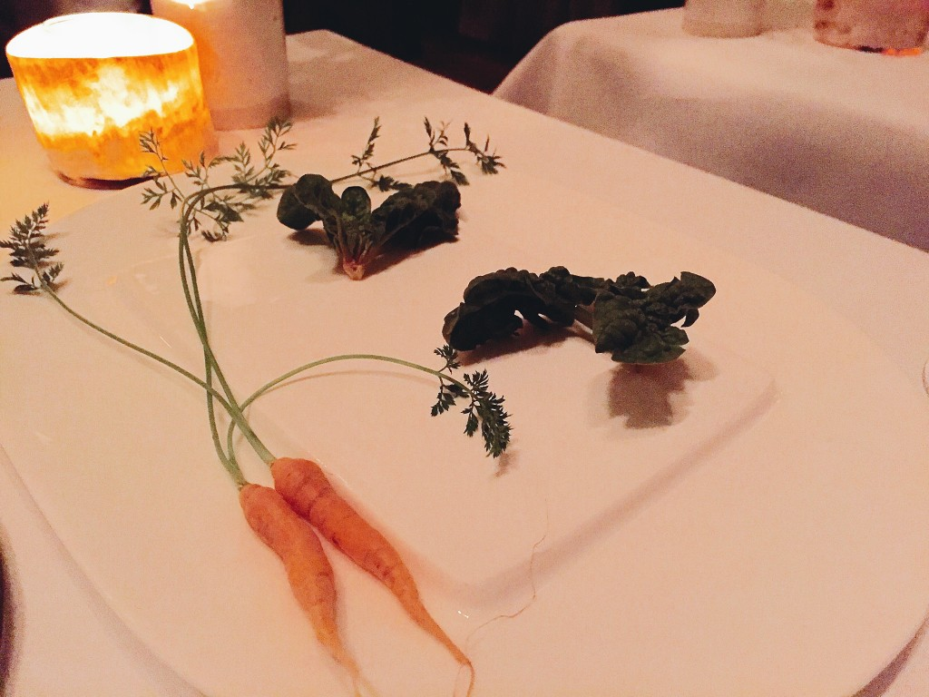 The sweetest carrots ever at Blue Hill Stone Barns