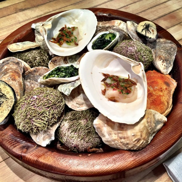Shellfish and everything they eat at Blue Hill at Stone Barns