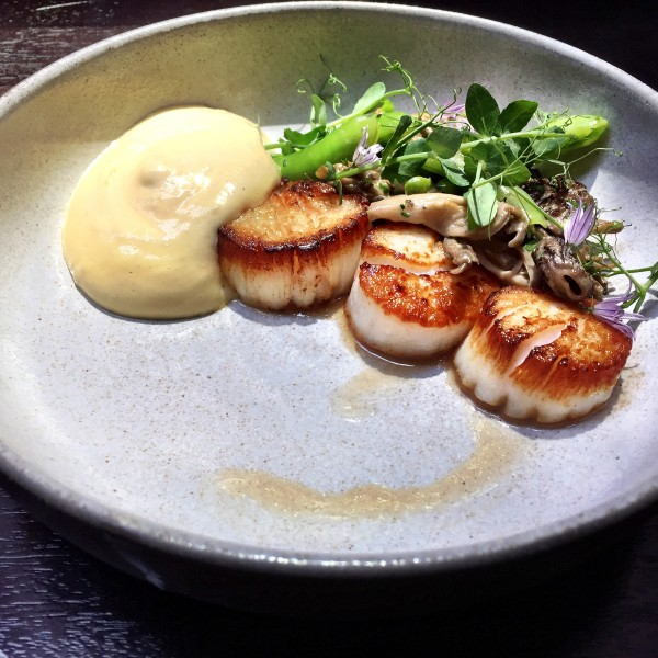 Scallops at The Nomad restaurant NYC